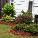 A variety of plants are used to screen an AC unit and add first floor privacy.
