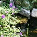 Lavista Park Water Feature 3