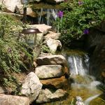 Lavista Park Water Feature 4