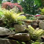 Rocks and ferns create a naturalized hillside on this Lullwater Drive property.