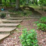Stone pavers create a stepped pathway to two different areas of the property.