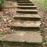 A stepped pathway built of stone pavers for easy access up the sloped lot.