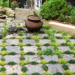 Stone pavers are softened by hardy plants on this patio.